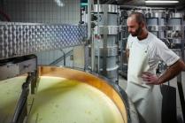 Il surveille la transformation du lait en lait caillé